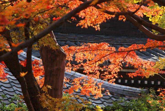 (写真:japan-guide.com)