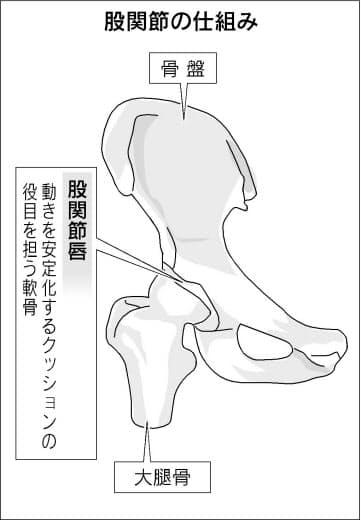 痛み 付け根 外側 足 の
