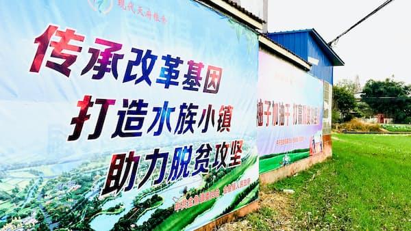 中国農村改革 発祥は金魚鎮