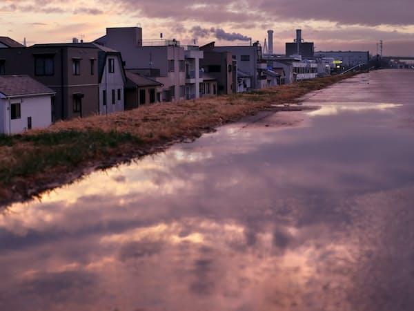 雨上がりの淀川の堤防。薄紫に染まった空が水たまりに映る=淡嶋健人撮影