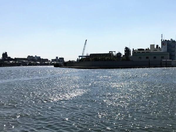 旧江戸川に浮かぶ妙見島(中央)