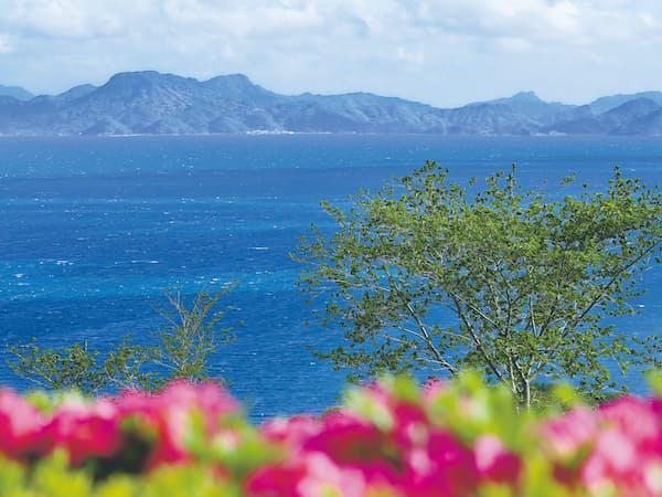 天草諸島との間に広がる真っ青な不知火海。新緑とともにツツジが咲く=小園雅之撮影