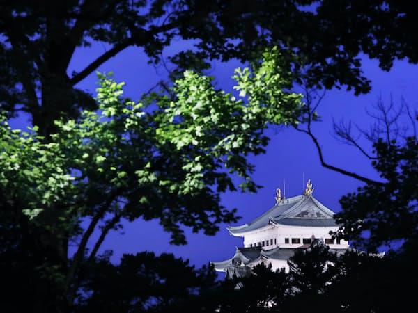 生い茂る木々の隙間から名古屋城を望む。薄暮の空にライトアップされた天守閣が輝く=上間孝司撮影