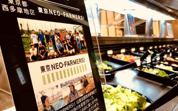 東京ネオファーマーズのプレートを立てたシズラーの東京国際フォーラム店のサラダバー                                                   (東京都千代田区)