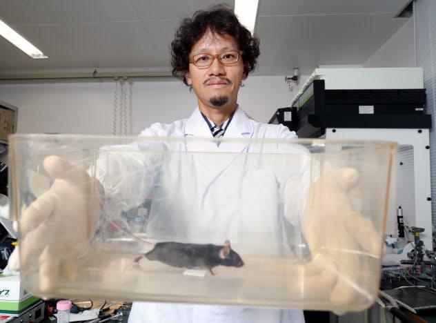 ネズミが恐怖を感じる香りを研究する脳科学香料の小早川高代表(大阪府茨木市)