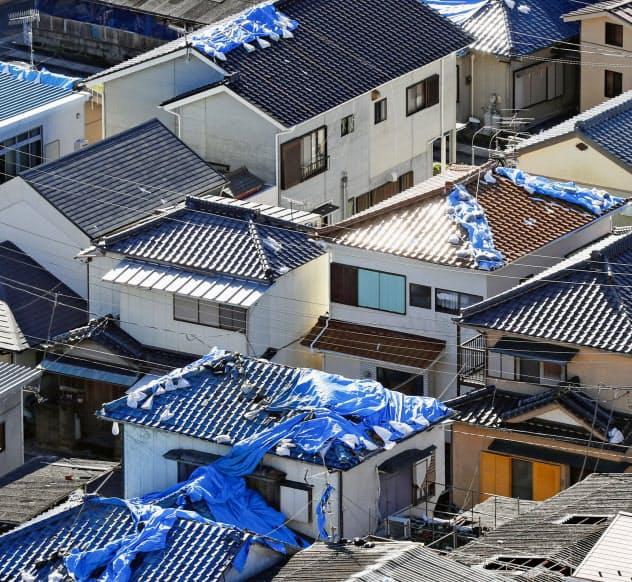 千葉県内ではブルーシートが不足する懸念が出ている(13日、千葉県鋸南町)