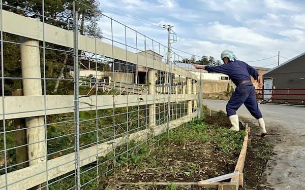 柵で感染源とされるイノシシの侵入を防ぐ養豚場も(千葉県香取市)