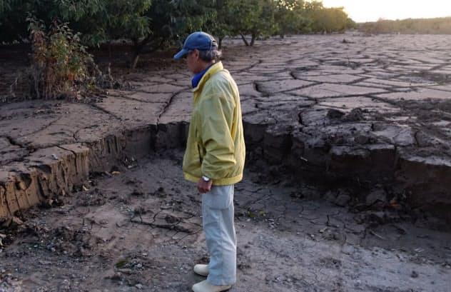 大量の土砂が農地の復旧を阻む(千曲川の河川敷)