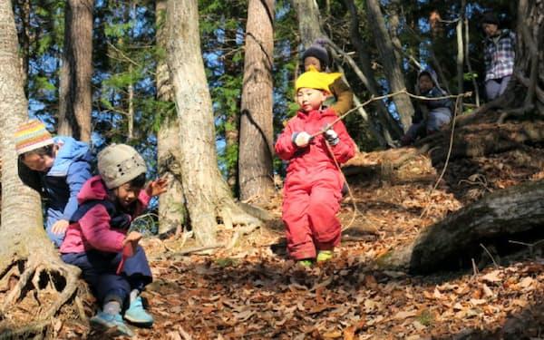 伊那市高遠第2・第3保育園の園児は園舎の裏の里山で遊ぶ(19年12月、長野県伊那市)