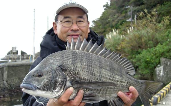 全長54センチ、重量2.36キログラムの「年無し」クロダイ。伊豆半島の静岡県下田市で釣り上げた