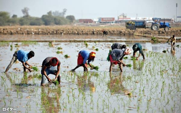 銀行は「優先業種」へ貸し出しする義務がある(インド西部グジャラート州)=ロイター