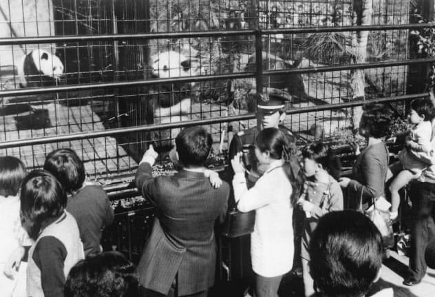 ランランとカンカンを一目見ようと一般公開初日に上野動物園には長蛇の列ができた(東京都台東区、1972年11月5日)