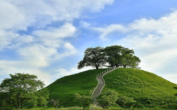緑に覆われた丸墓山古墳。忍城水攻めの際、石田三成が頂に陣を張った=塩田信義撮影
