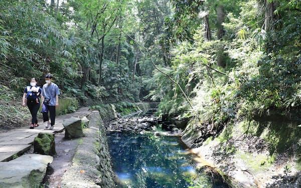 東京23区唯一の自然渓谷がある等々力渓谷公園