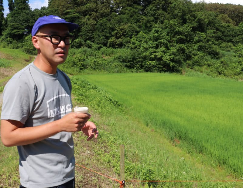 金沢市出身の村田社長が2018年にノウチを設立した(写真上、津幡町の中山地区)。3人の従業員がブドウ園を運営している(かほく市)