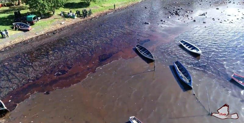 重油1000トン超流出 環境・生態系に影響