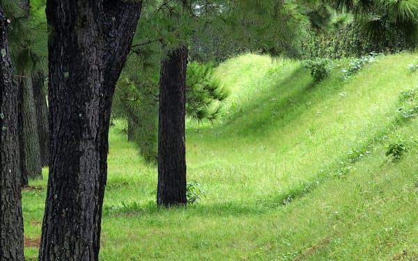 浜口梧陵が残した広村堤防。整備され美しい緑が覆う=松浦弘昌撮影