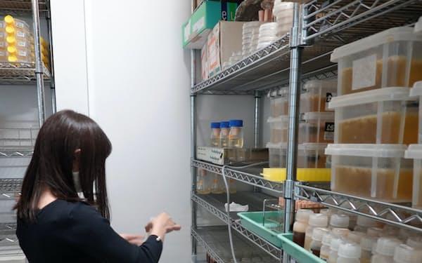微生物工学研究室では花酵母の分離や仕込みの実験を行う
