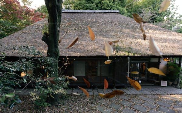 ミュージアムとして公開されているかやぶき屋根の旧白洲邸。落ち葉がクモの巣にとどまり風に揺れていた=竹邨章撮影