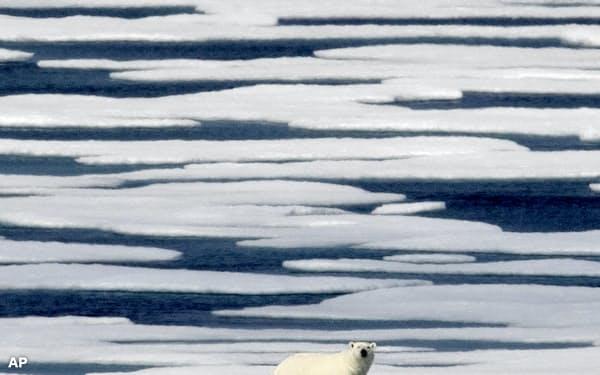 トランプ米政権は退陣直前に北極野生生物国家保護区での石油掘削権を販売する計画だ=AP
