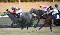 最後のレース「第35回有馬記念」を優勝で飾ったオグリキャップと武豊騎手(90年12月、中山競馬場)=共同
