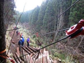 木と木の間に張ったワイヤ架線で伐採した丸太を運び出す(NPO法人、土佐の森・救援隊提供)