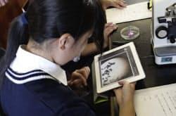 生物の授業中にiPad2を使う千葉県立袖ケ浦高校情報コミュニケーション科の生徒