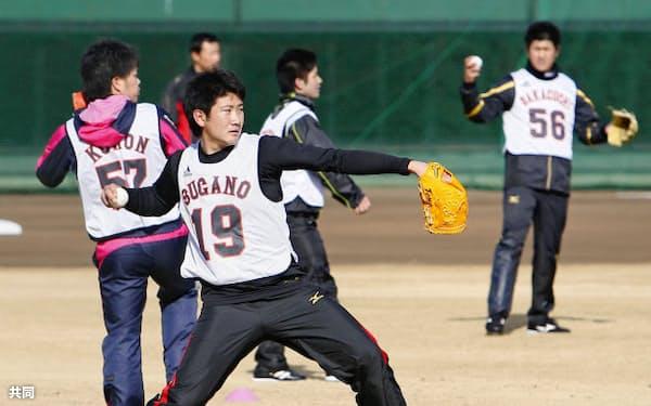 巨人の新人合同自主トレーニングでキャッチボールをする菅野(10日、川崎市のジャイアンツ球場)=共同