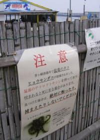 茅ケ崎市が海水浴場に張り出した注意を呼びかけるポスター