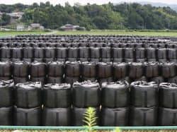 広大な敷地に汚染土が詰められた袋が整然と並ぶ(福島県楢葉町)