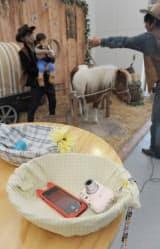 カウボーイ衣装で馬と撮影に臨む観光客。持ち込みのiPhoneでプロカメラマンに撮影してもらえる(マザー牧場)