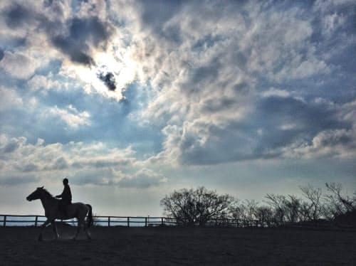 写真に後で文字を入れる前提で空を広く画面に収めた。逆光で馬もシルエットになった(マザー牧場)=画像処理アプリ使用
