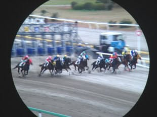 最終レース、ゲートから一斉に走り出す競走馬を流し撮りした(船橋競馬場)=双眼鏡使用