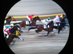 目の前を通過する競走馬。流し撮りがうまくいくと疾走している感じを伝えやすい(船橋競馬場)=双眼鏡使用