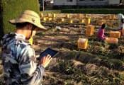 高知県の農業法人では農作物の成育状況を現場で撮影して説明文を入力している