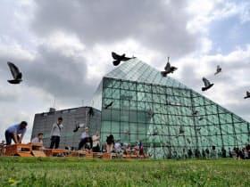 開幕式では笛を付けたハトが空を舞う坂本龍一氏の作品が披露された(札幌市)
