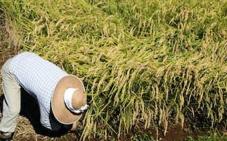 農業の姿が変わろうとしている