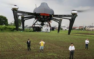 ソルガム畑上空を飛ぶ無人小型ヘリ(東京都西東京市の東大大学院農学生命科学研究科付属生態調和農学機構)
