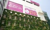 イオンなど小売り大手は設備投資を拡大している(大阪市、イオンモール大阪ドームシティ)