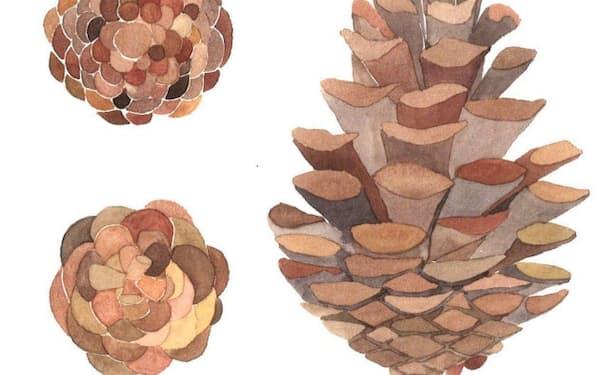 (新潮社・2300円 ※書籍の価格は税抜きで表記しています)