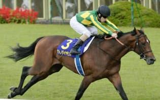 今秋の菊花賞でサトノダイヤモンドは2着馬に2馬身半差をつけて圧勝=共同