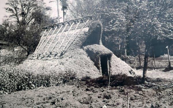発見した遺跡には一時期、竪穴住居が復元されていた(千葉県野田市)
