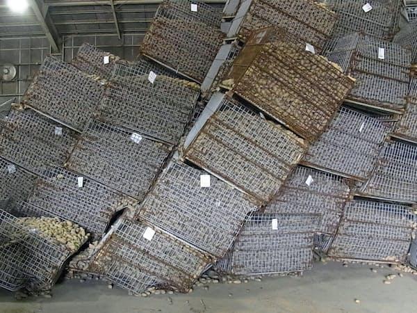 出荷前の農作物に大きな影響が出た(北海道厚真町)