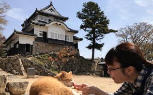 猫城主さんじゅーろーは愛くるしい姿で人気を集める