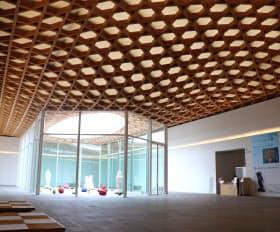 天井は大分県産の杉が美しい模様を描く