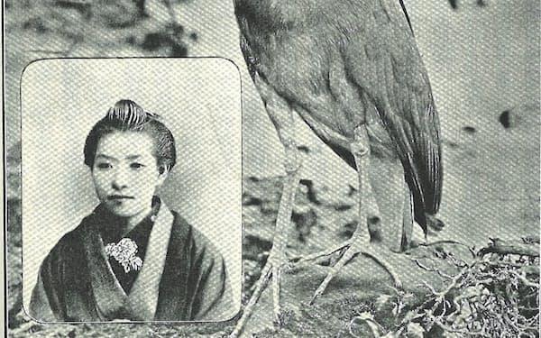 文芸誌「文芸倶楽部」に掲載された樋口一葉(写真左下)ら新進作家の写真(1895年ごろ)