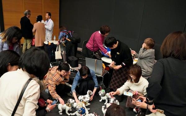 aiboファンのコミュニティーも広がる(1月25日、東京都港区)