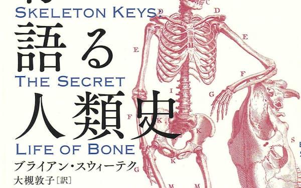 原題=Skeleton Keys(大槻敦子訳、原書房・2700円)                                                     ▼著者は米在住のサイエンスライター。一般誌・科学雑誌に寄稿多数。著書に『移行化石の発見』。                                                     ※書籍の価格は税抜きで表記しています