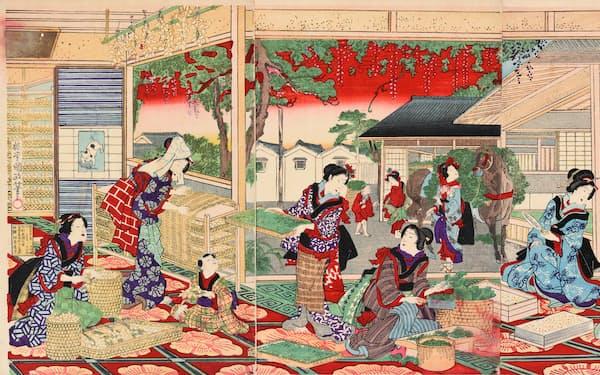 国立大学法人東京農工大学科学博物館所蔵・提供