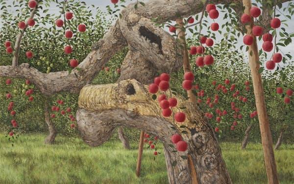 「老いたるりんごの物語 第40話 斎藤武則さんのふじ」